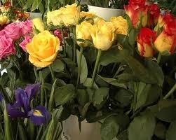 Vinzatorii de flori de la Calea Baarabiei au fost amendati