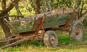 O femeie de 33 de ani din Leova a decedat dupa ce a cazut din caruta