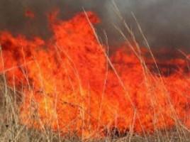 In Moldova- 50 de incendii în 24 de ore