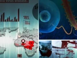 Unele persoane infectate cu Ebola supravietuiesc, iar altele nu. Patru factori care fac diferenta, vezi aici