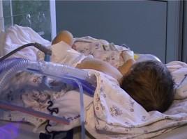 Intoxicatie - un copil de 5 ani a consumat pomusoare de padure