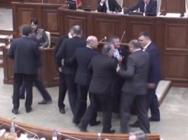 socialistul Grigore Novac a sarit la bataie la M Ghimpu in timpul sedintei parlamentare (video)