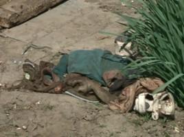 Un copil de 2 ani s-a innecat in viceul casei la Nisporeni