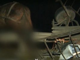 Accident rutier la Chiscareni, Singerei. O caruta s-a tampona cu un TIR